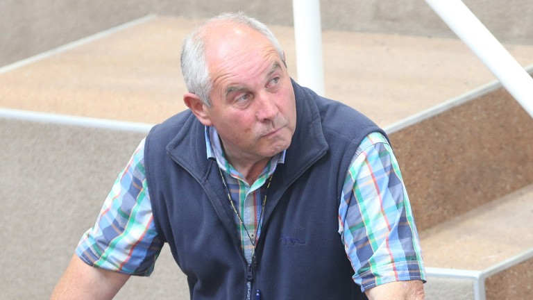 Breeder Ken Parkhill has had plenty of success with this family