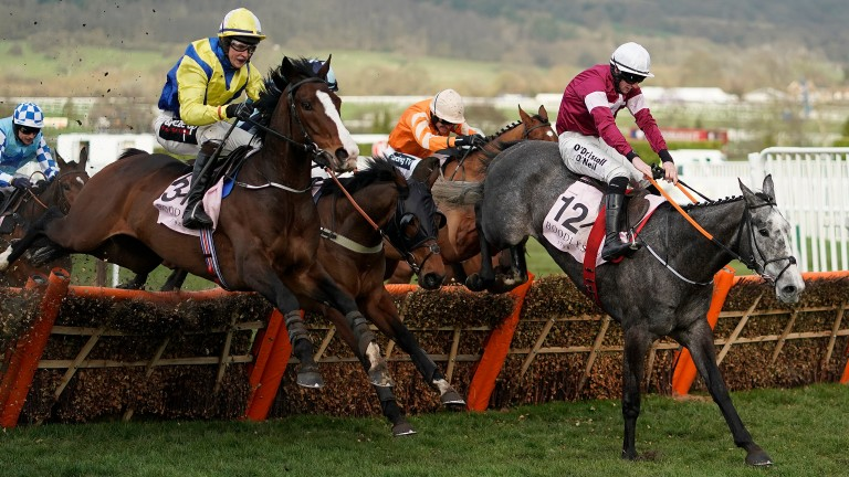Band Of Outlaws (left) went on to defeat Coko Beach to give Joseph O'Brien his first official Cheltenham Festival win