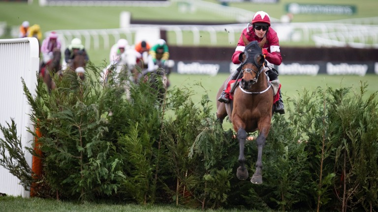 Tiger Roll: on his way to an emphatic fourth Cheltenham Festival success