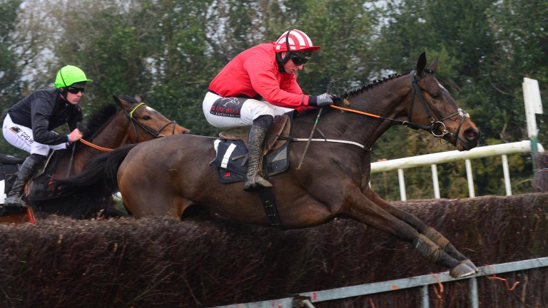 Enjoy D'Allen on his way to victory at Tinahely under Jamie Codd