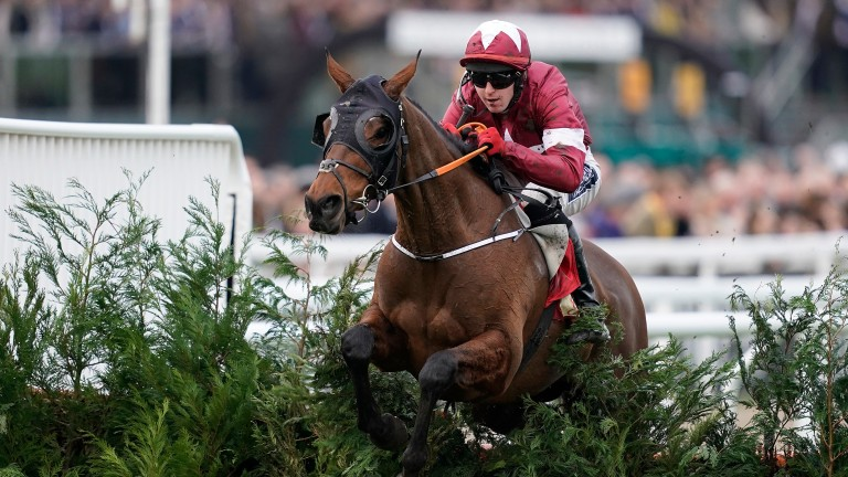 Tiger Roll: Won the Glenfarclas Chase in effortless fashion