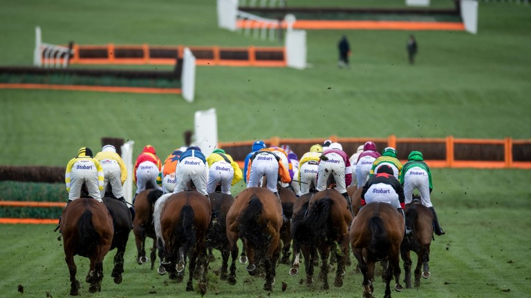 Stayers' Hurdle: the highlight of day three at Cheltenham