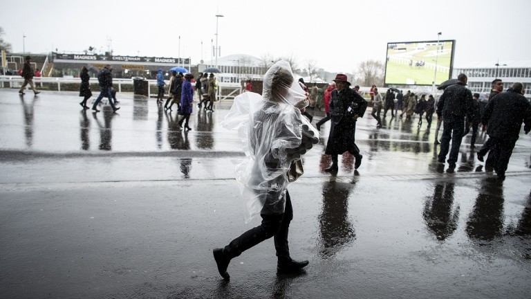 Rain at Prestbury Park on Gold Cup day