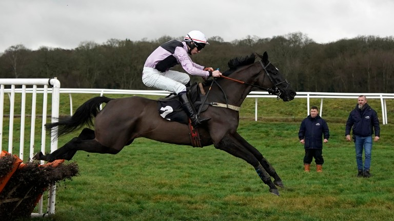 Ar Mest: withdrawn from County Hurdle at Cheltenham on Friday