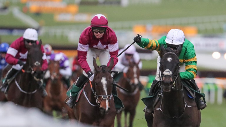 Martin Pipe winner Early Doors was originally bought for ?6,000 at Arqana