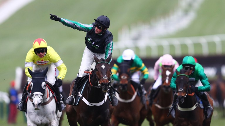 Superstar Altior has won four times at the festival, including twice in the Champion Chase