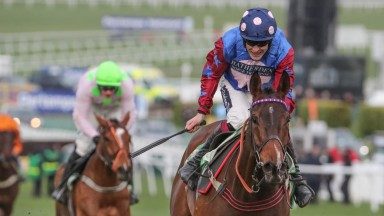 Thursday: Aidan Coleman and Paisley Park, who raised the roof with their Stayers? Hurdle victory