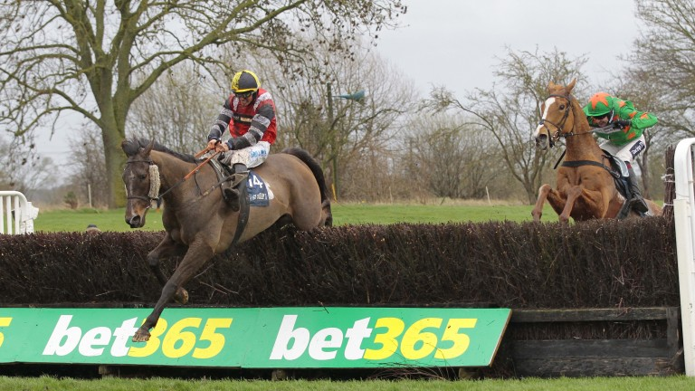 Potters Corner: represents Wales in Chepstow's big race