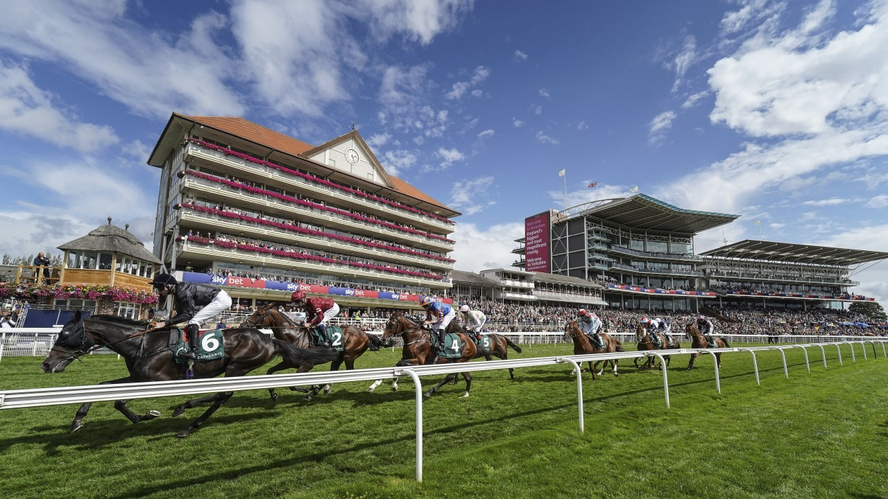 Wednesday's free racing tips: our experts give their best
