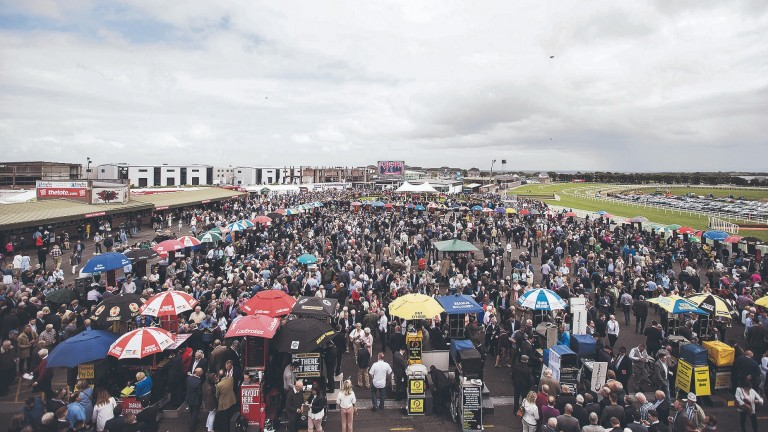 """Michael Moloney: """"While we have a great festival, the people are really part of Galway"""""""