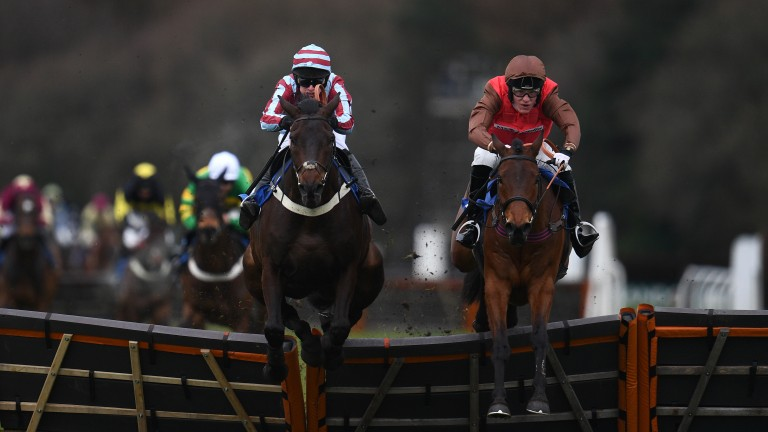 Dolphin Square (right): will once again have David Maxwell in the saddle