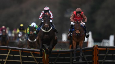 EXETER, ENGLAND - MARCH 18: Dolphin Square ridden by Mr D Maxwell(R) jumps the last on their way to winning the Like Racing TV On Facebook Maiden Hurdle (Div 1) at Exeter Racecourse on March 18, 2019 in Exeter, England. (Photo by Harry Trump/Getty Images)