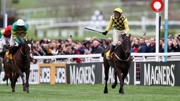 Al Boum Photo (yellow): will go to Tramore for his seasonal reappearance