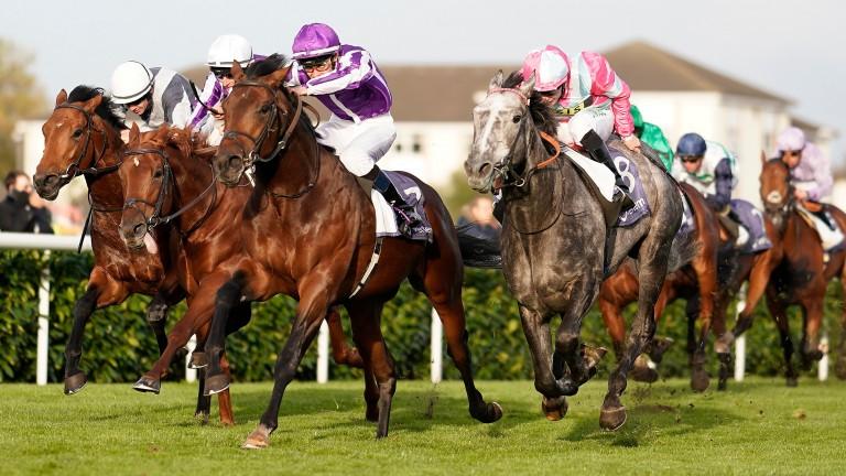 Magna Grecia (Donnacha O'Brien, purple cap) wins the Vertem Futurity at Doncaster last October