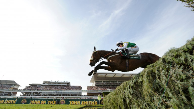 Ballabriggs soars over a fence on his way to Aintree glory in 2011