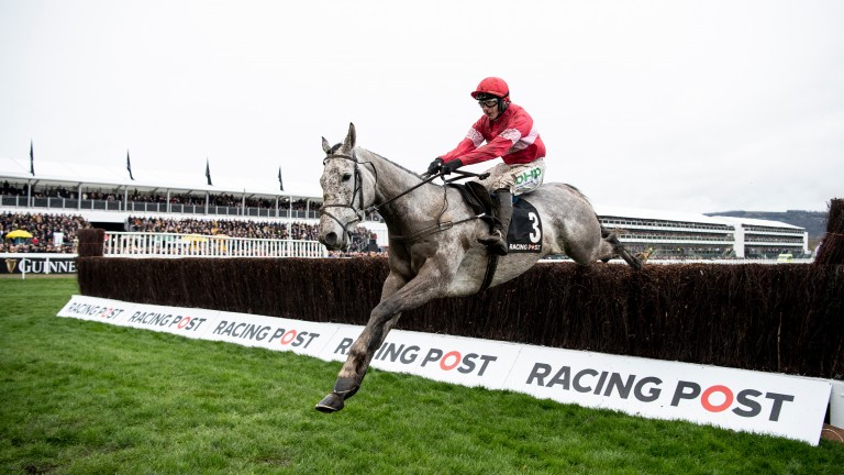 Duc Des Genievres: jumps the last fence to win the 2019 Racing Post Arkle Chase
