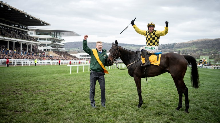 Al Boum Photo: the son of Buck's Boum strikes a pose after winning the Gold Cup