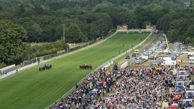 Runners in the 2015 Royal Hunt Cup thunder down the straight mile at Ascot
