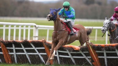 The progressive Ronald Pump gained his third win in four starts in the 3m handicap hurdle at Cork
