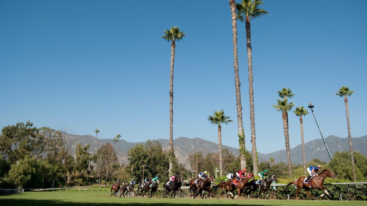 2019 Breeders Cup To Remain At Santa Anita After Horse