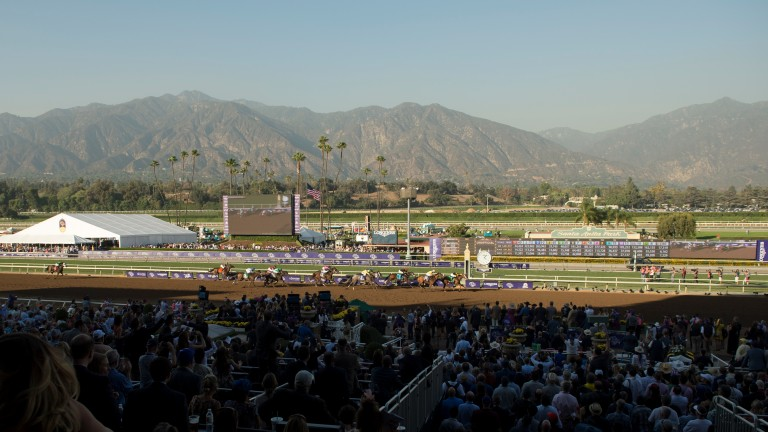 Hollendorfer's runners were also banned from Santa Anita owing to his poor safety records
