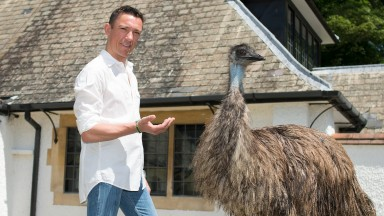 Australians are not our enemies: in the post Rod Hull era, Frankie Dettori makes friends with an emu