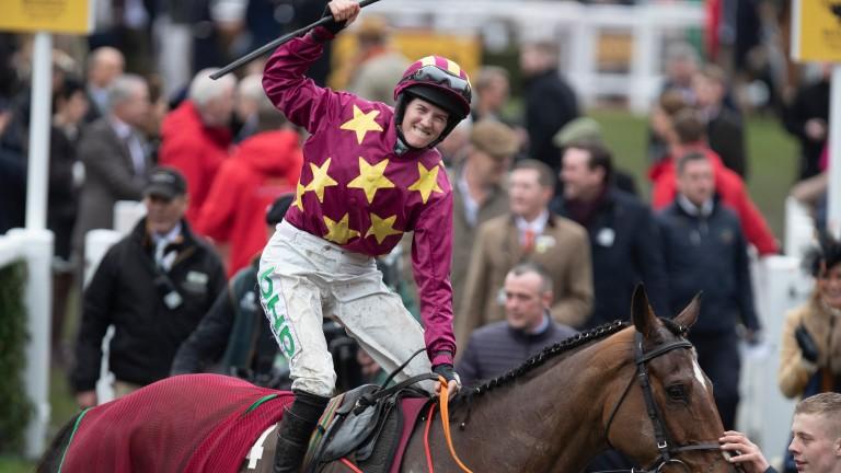 Minella Indo: winner at Cheltenham and Punchestown
