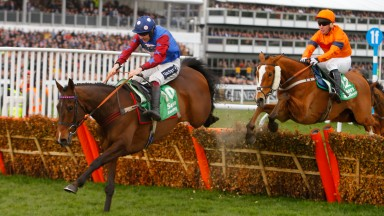 Sam Spinner and Joe Colliver chase Paisley Park over the last in the Sun Racing Stayers' Hurdle at Cheltenham