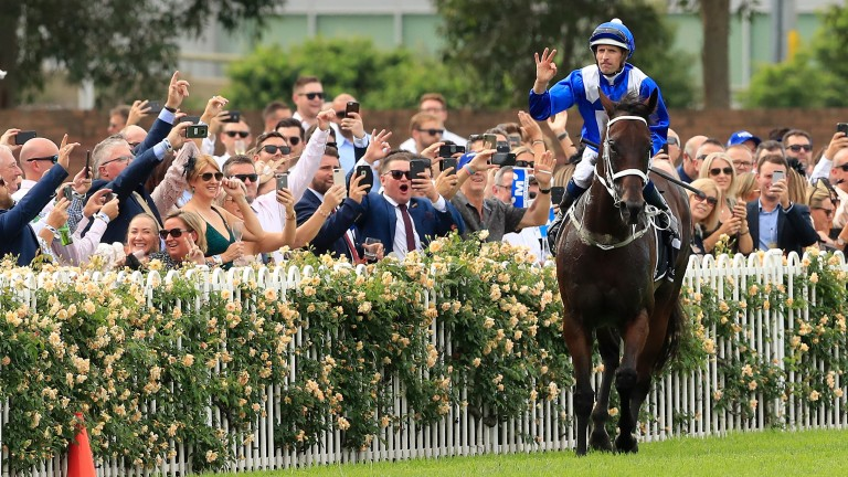 Hugh Bowman celebrates after winning the George Ryder Stakes on Winx