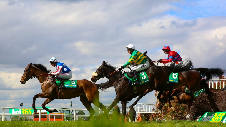 Special Tiara and Noel Fehily lead Mr Mole and Tony McCoy on their way to winning the Celebration Chase at Sandown