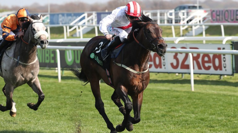 Impressive: Invincible Army stormed clear at Doncaster last time