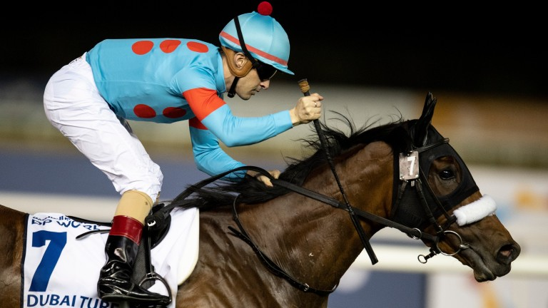 Almond Eye: will not travel to France for the Arc in October
