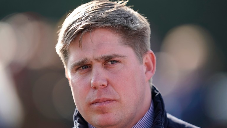 Dan Skelton: could send a number of runners  to Newcastle for its jumpers' bumpers card
