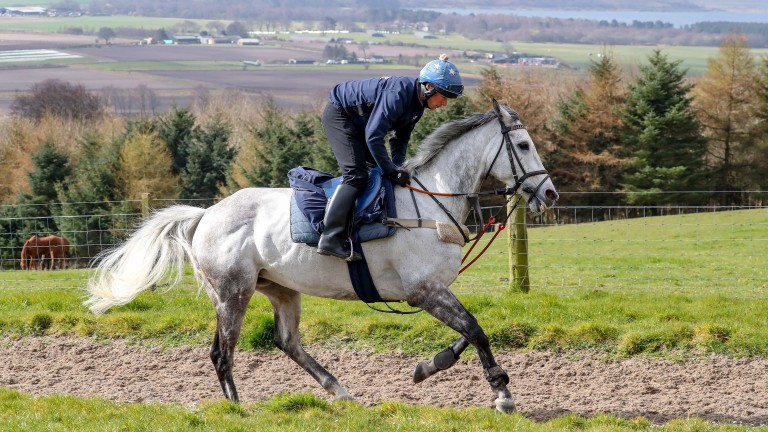 Lake View Lad: Brooke his optimistic about his claims