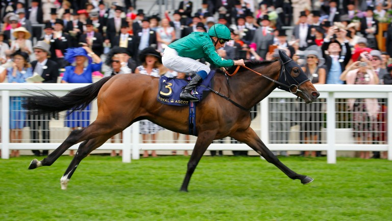 Aljazzi out clear in the Duke Of Cambridge Stakes