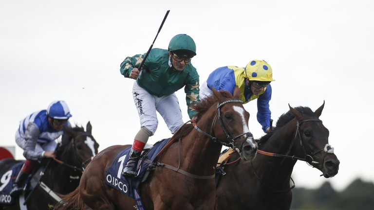 Decorated Knight wins the Qipco Irish Champion Stakes at Leopardstown
