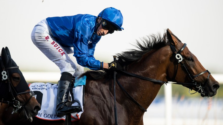 Cross Counter: finished third in the Gold Cup at Royal Ascot