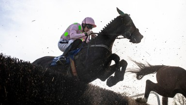 Burrows Saint: runs out an impressive winner of the Hugh McMahon Memorial Novice Chase at Limerick