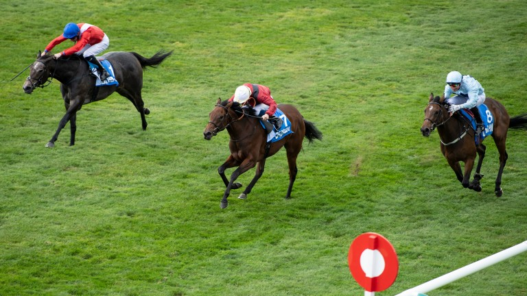 Mot Juste (centre): Roger Varian filly may go well in the Falmouth