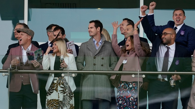 Andy Murray (centre) enjoys a day out at the Cheltenham Festival last month as his wife Kim cheers on the horses