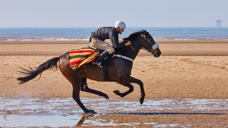 Chris Hughes: recreated Red Rum's gallops on Ainsdale Beach