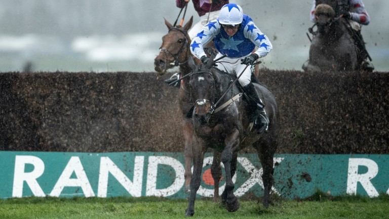 Betway Bowl winner Kemboy on the Gold Cup trail at Punchestown