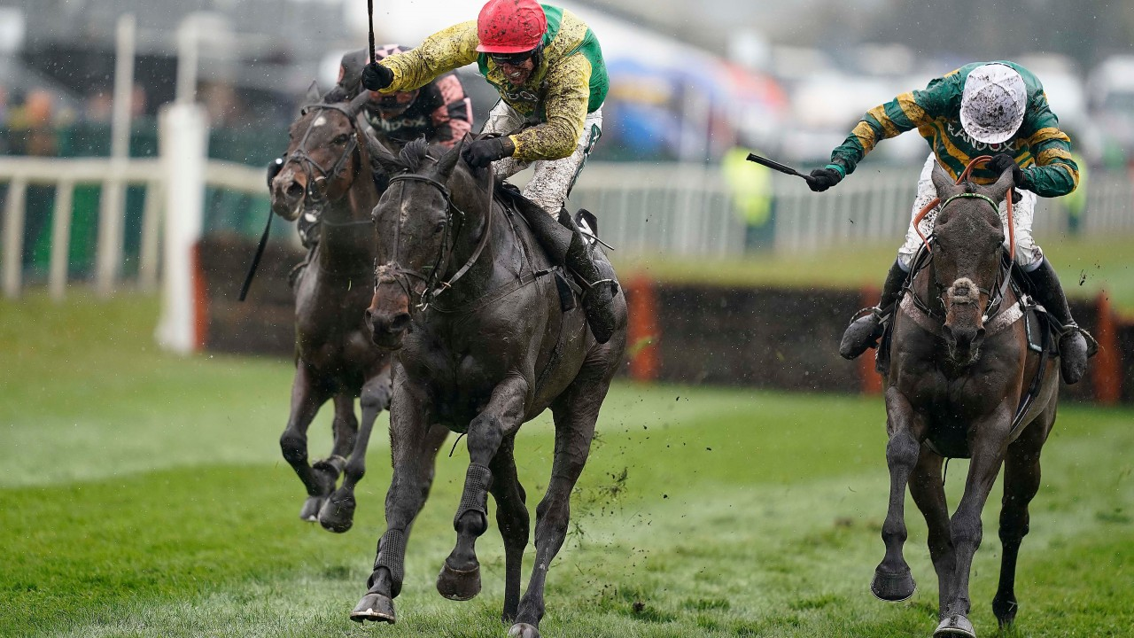racing post betting site results from super