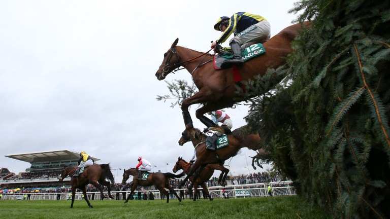 An insurance policy covered the Grand National against abandonment due to a communicable disease