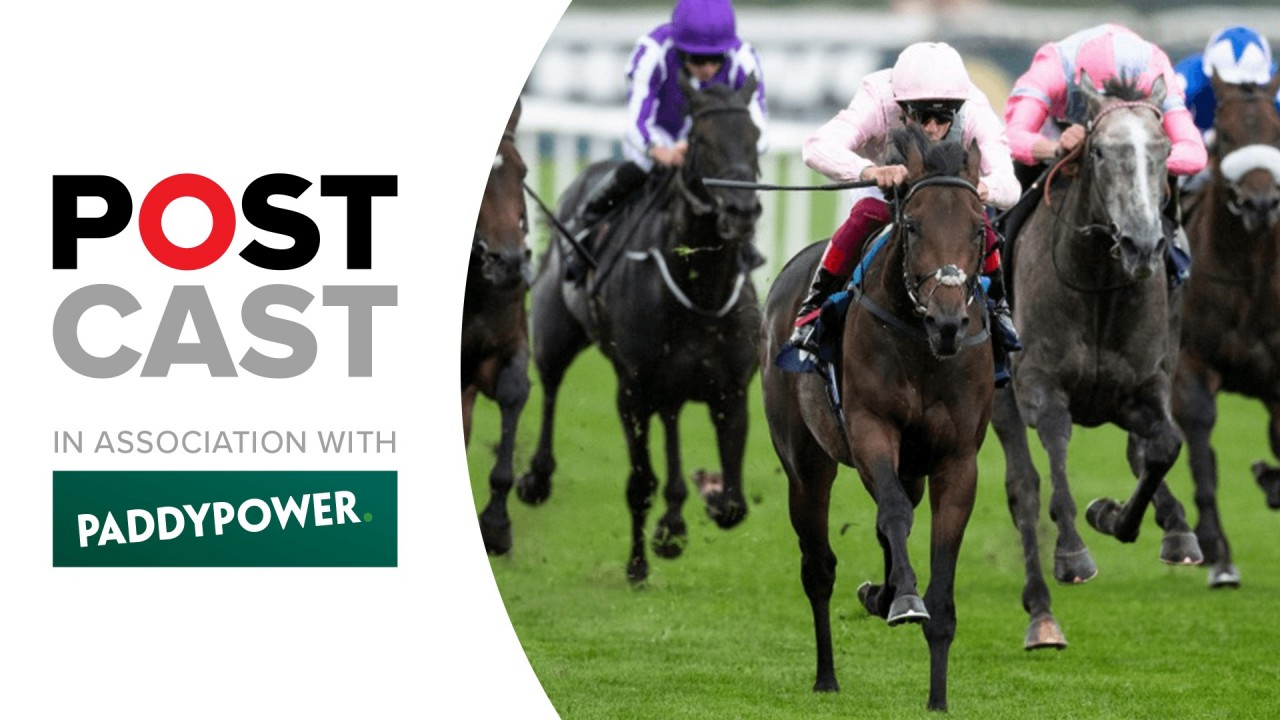 Ante post betting 1000 guineas to dollars 128m bitcoins
