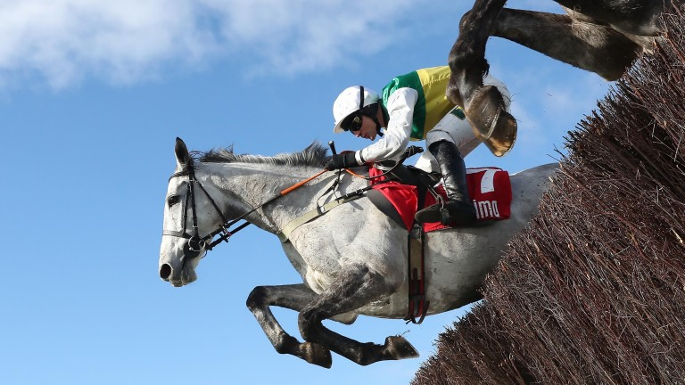 Vintage Clouds: fell at the first in the Grand National