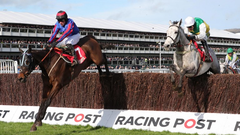 Beware The Bear: seeking a hat-trick in the Scottish National on Saturday