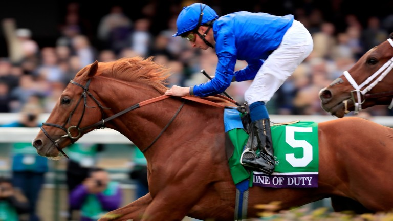 Line Of Duty: was a winner at the Breeders' Cup last year