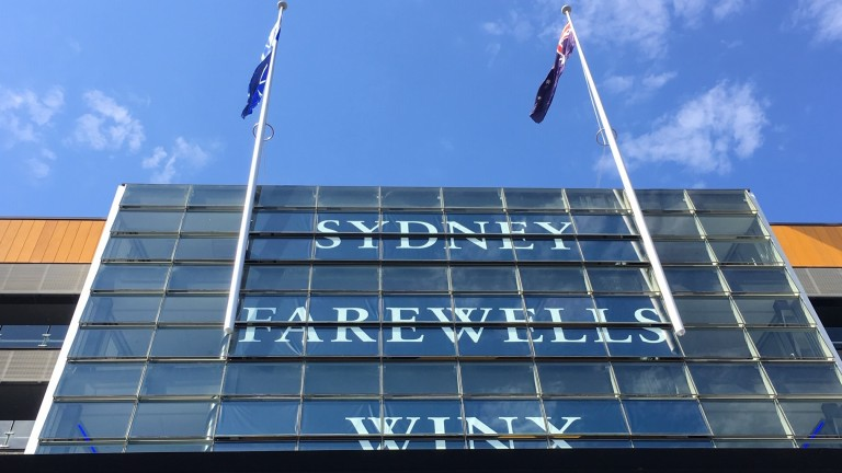 There was no way of missing who was the star of the show at Randwick, where a Winx flag flew alongside that of Australia.