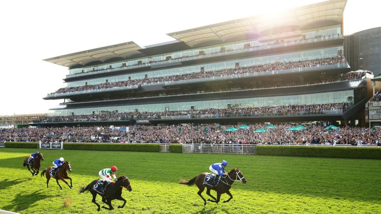 Winx wins for the 33rd consecutive occasion in the Queen Elizabeth Stakes
